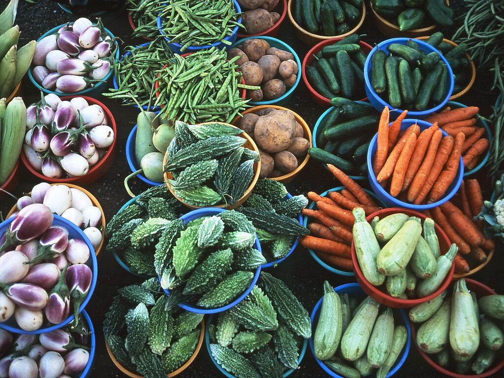 Gemüse von der Batinah Küste / Vegetable from the Batinah Coast