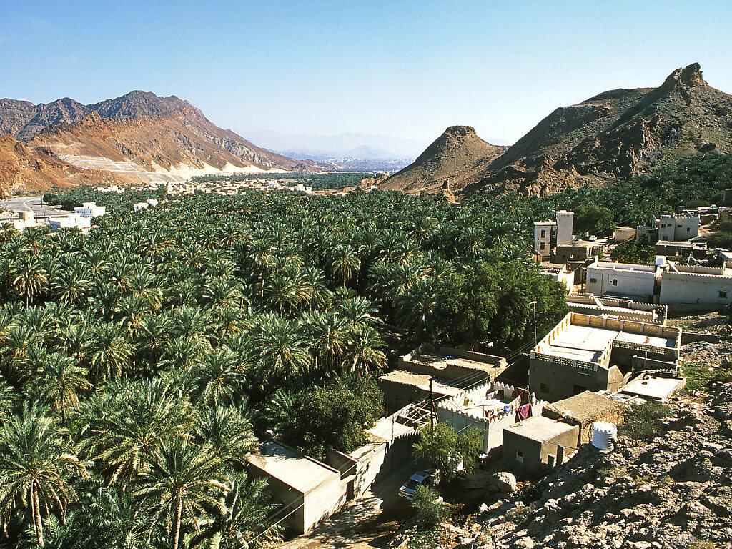 Talblick auf die Oase Fanja / Valley view on Fanja oasis