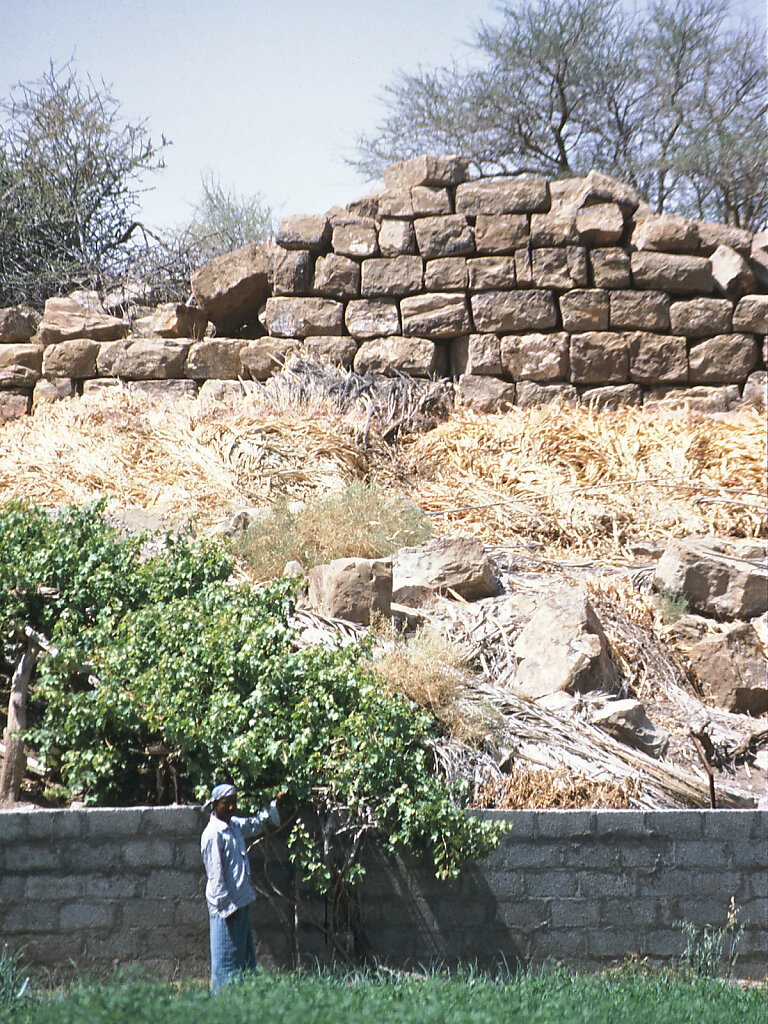 Baat Turmgrab / Baat Tower Tomb